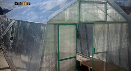 greenhouses-hothouses-repairing01